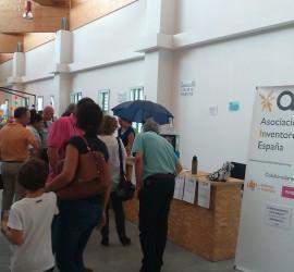 Sunday Market Exposición y Talleres